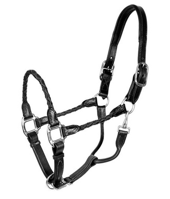 Perris Braided Leather Halter